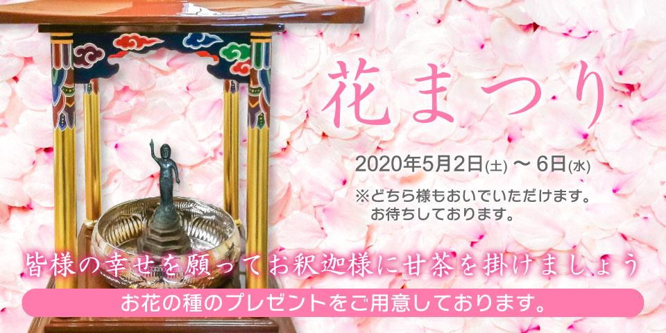 花まつり 2020年5月2日(土)~6日(水) 皆様の幸せを願ってお釈迦様に甘茶を掛けましょう お花の種のプレゼントをご用意しております。