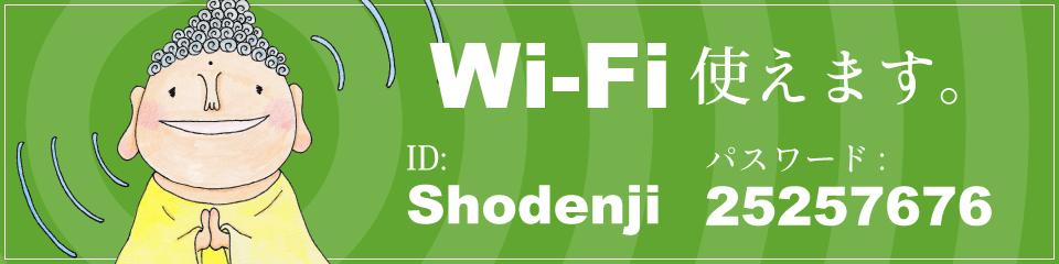 Wi-Fi 使えます。